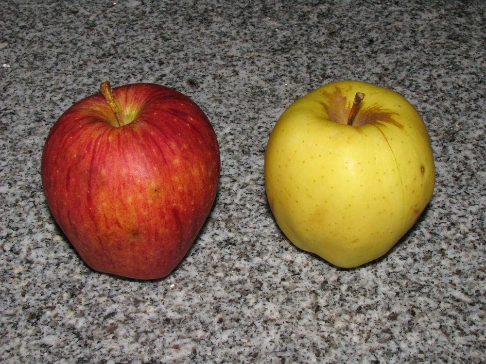 apple.jpg by nkargar1356