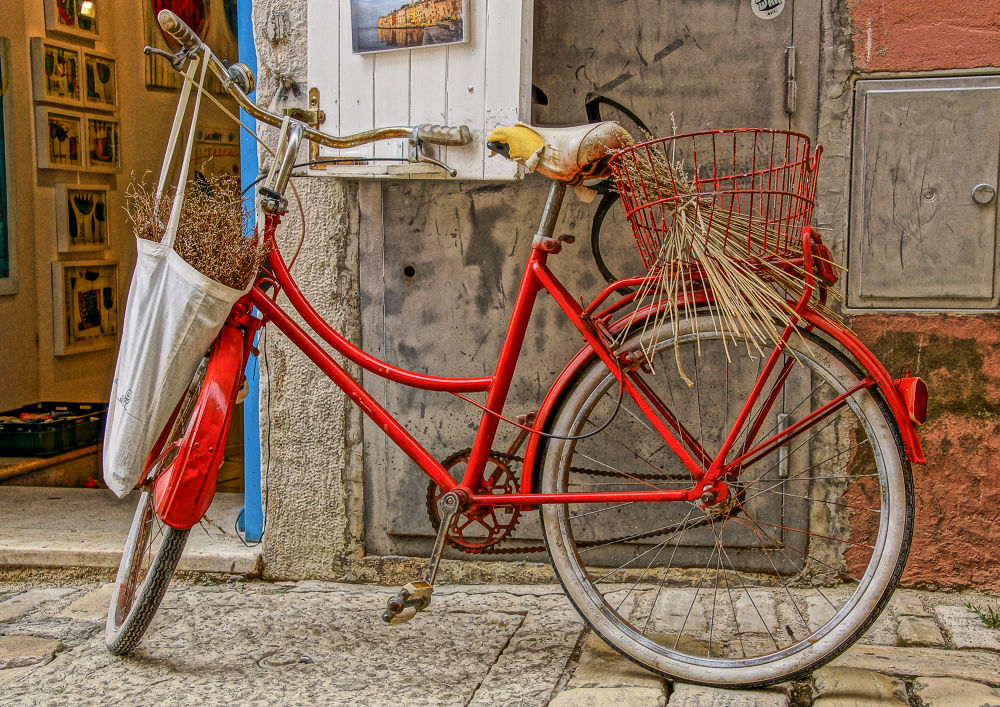 26 bicycle by FJK