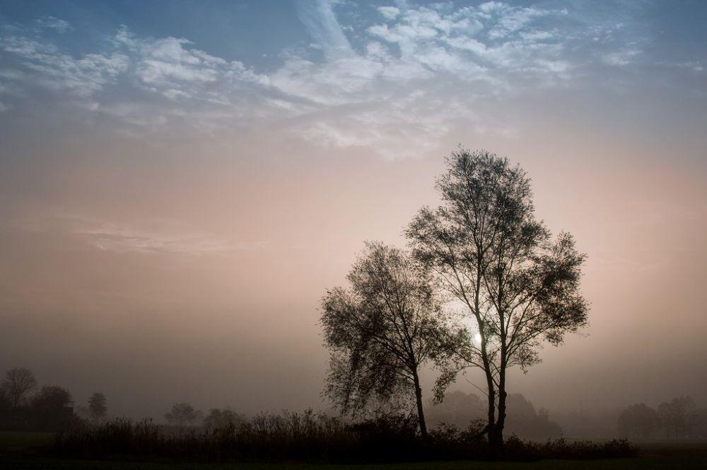 Morning glow by Kirsten Karius