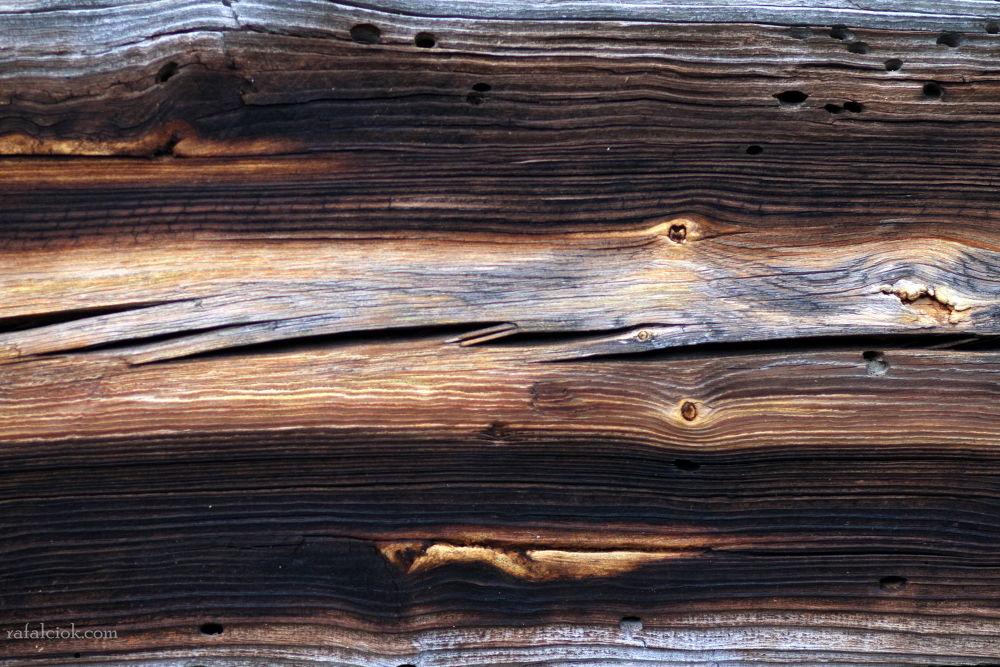 woodworks by Rafał Ciok