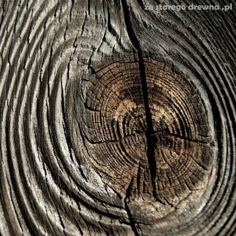 Photo in Nature #reclaimed wood #old wood #wood structure