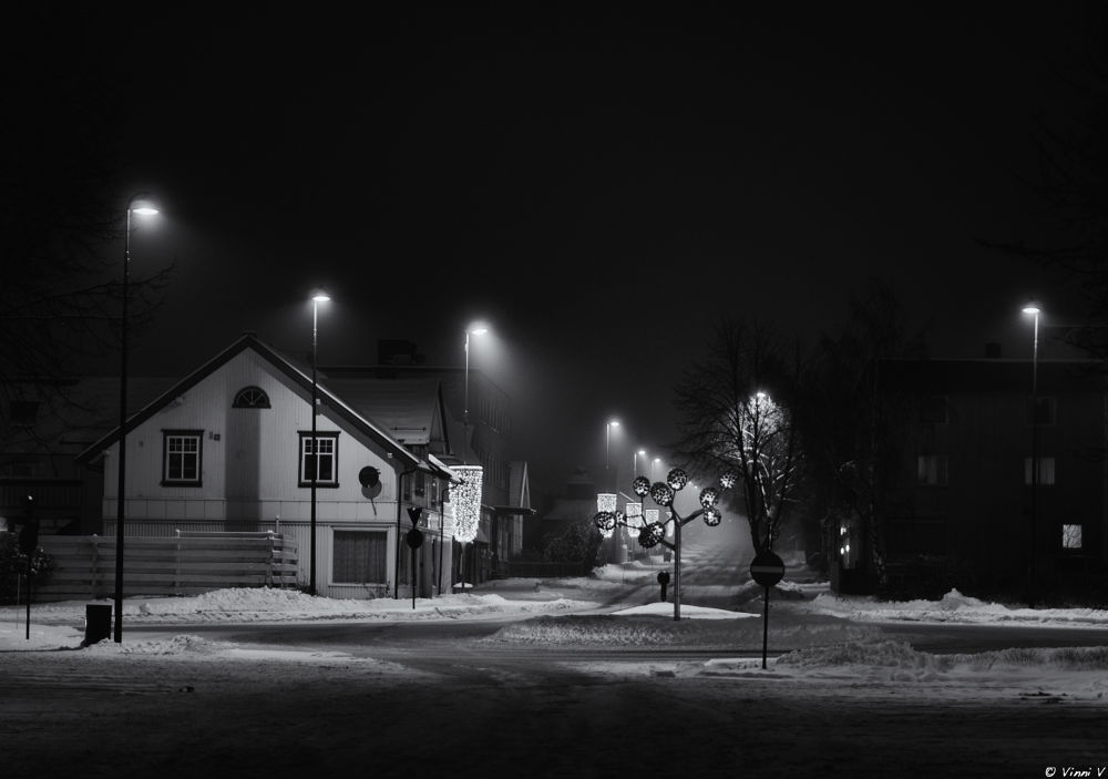 A Night At The Rotary by Vinni V