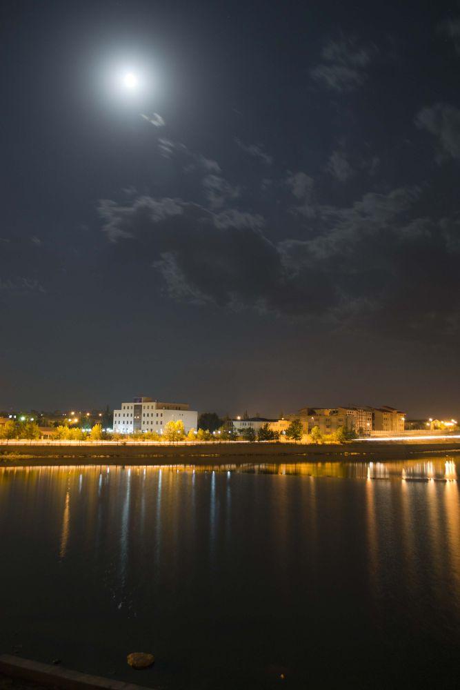 _DSC1813 by saeed ahmadian moghadam