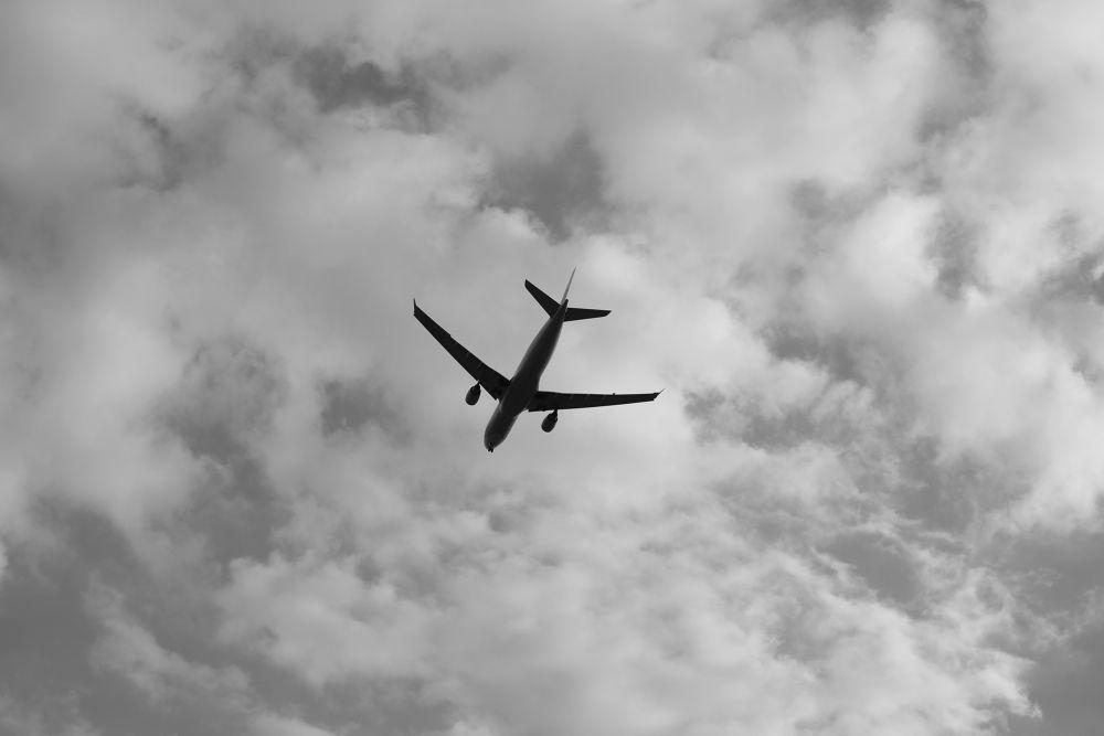 a passenger plane. by Hiroshi_Kume