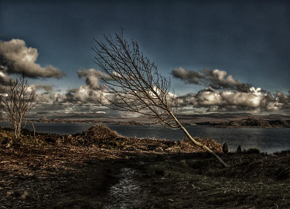 Desolate by gordonwestran