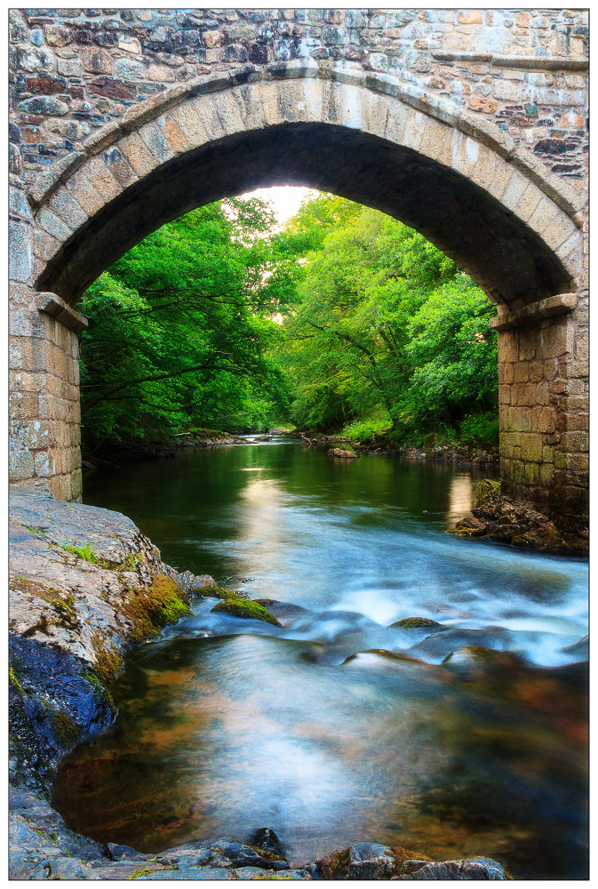 Bridge to Neverland by ourniti