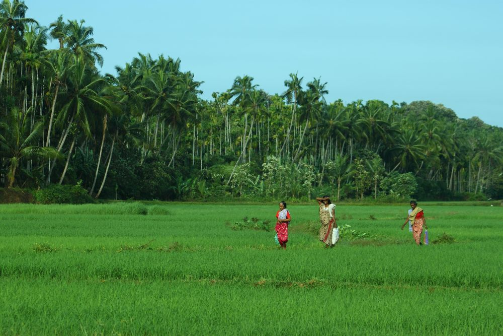 Leaving for work.....a scene from Thrissur, Kerala by Achu