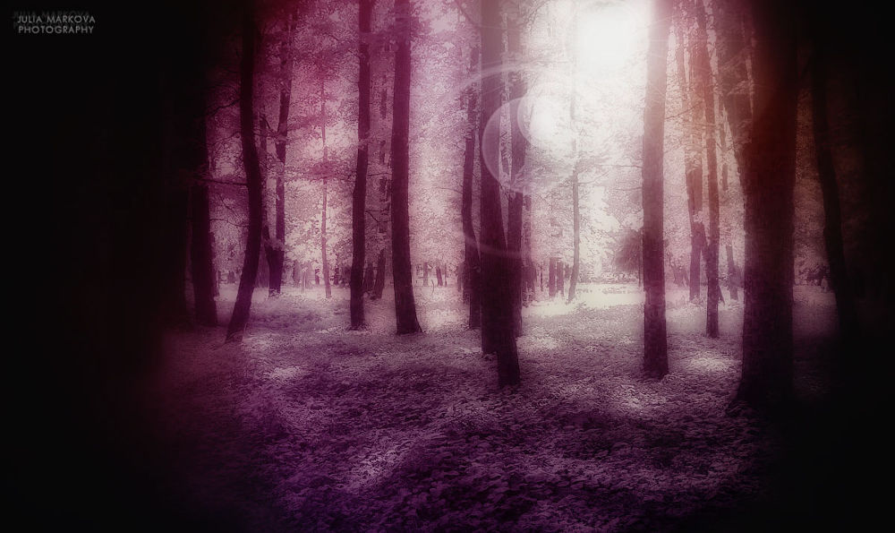 * by Julia Markova