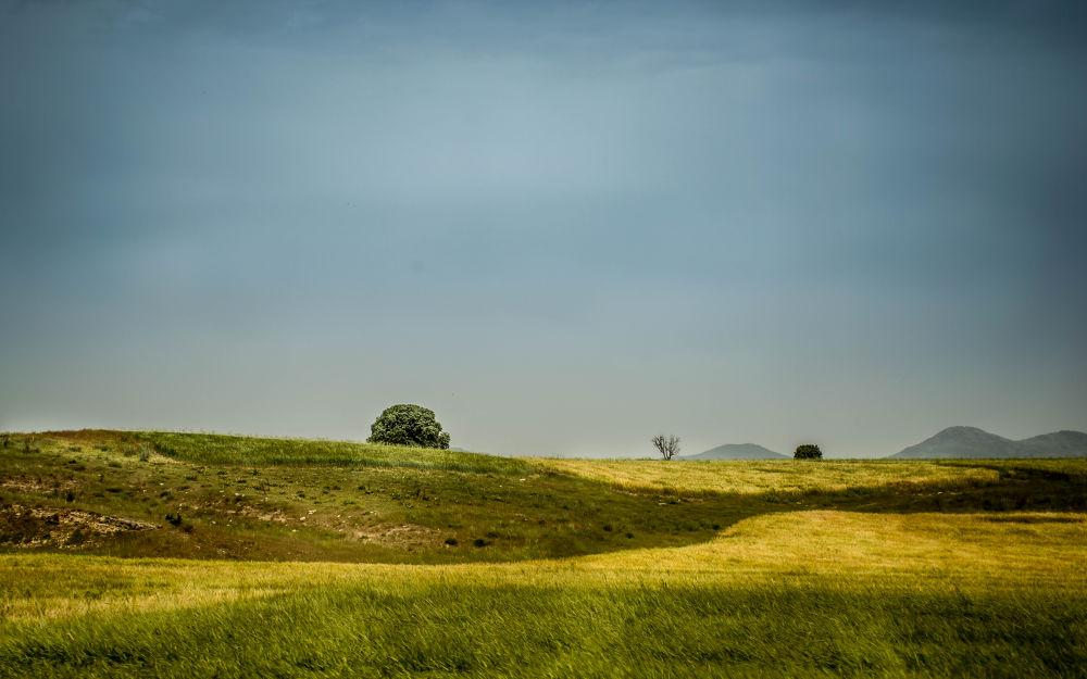 Landscape ..  by Bari