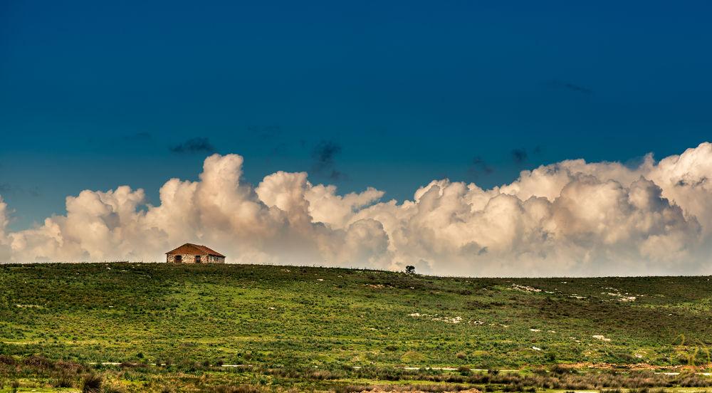 Landscape ...  by Bari