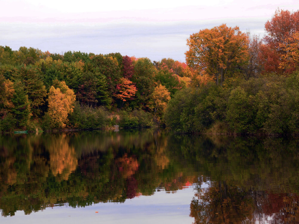 Photo in Nature #fall river