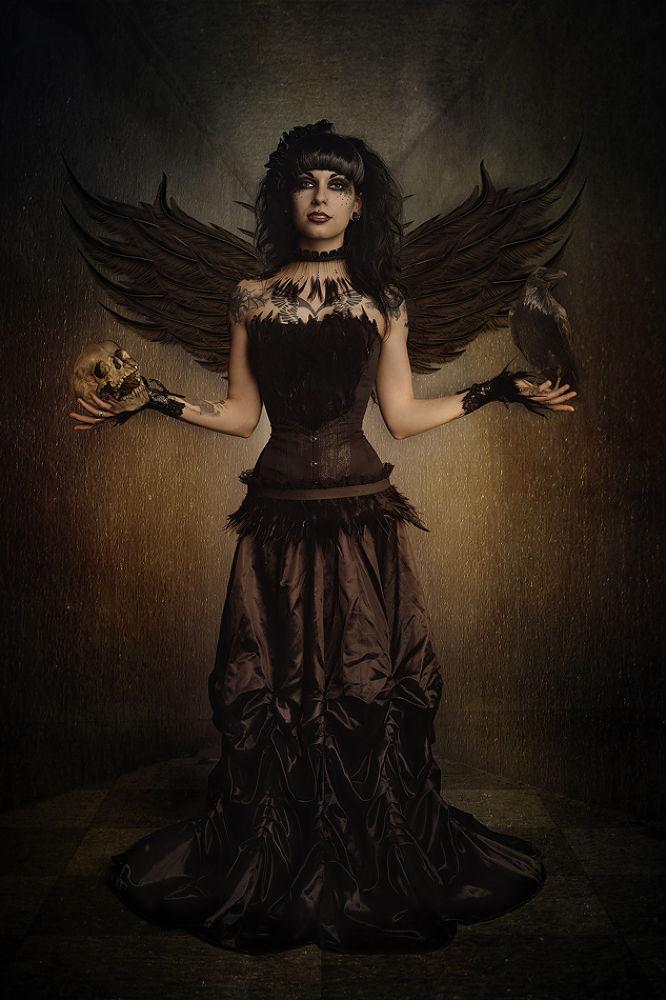 Raven by FotostyleSchindler