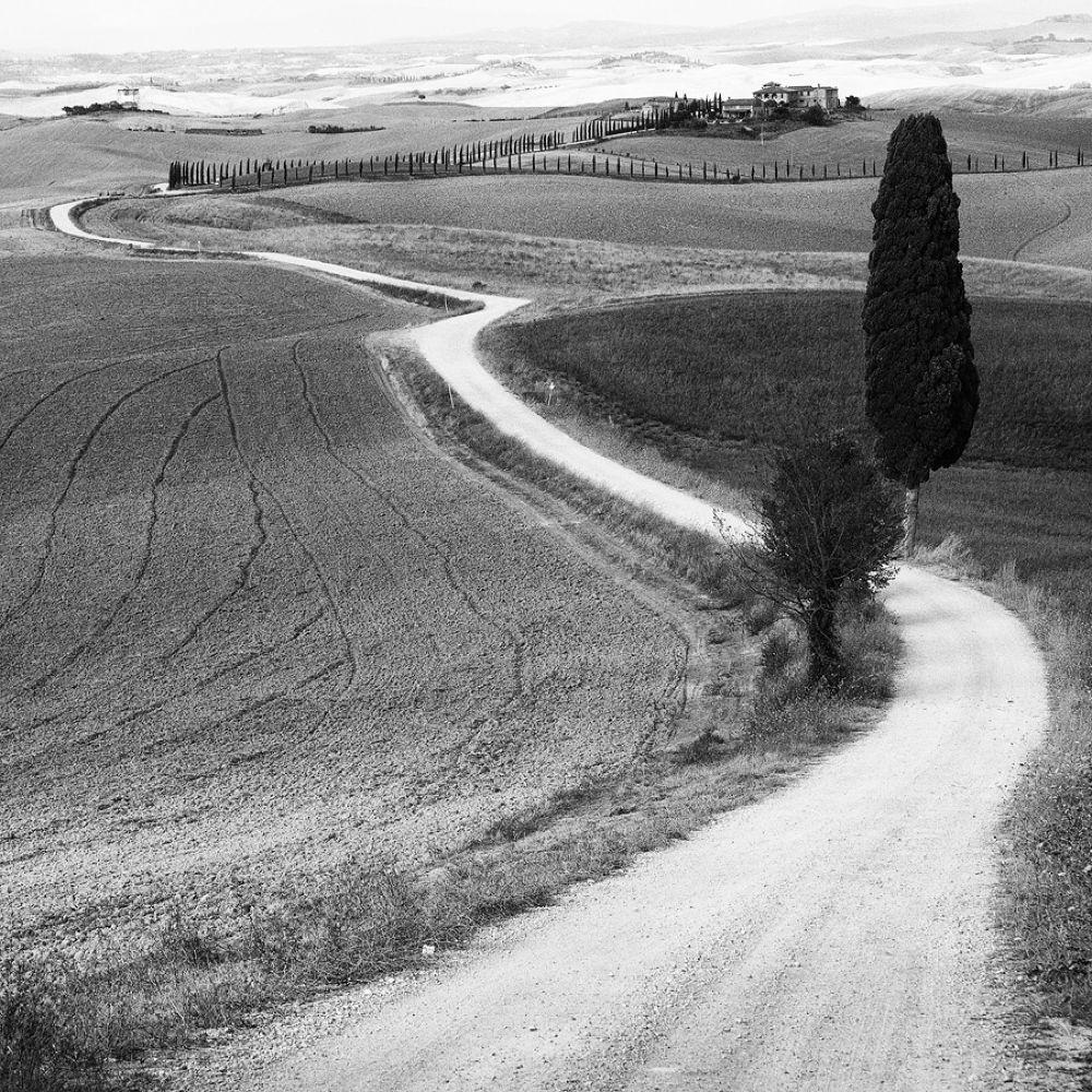 Le Strade della Val D'orcia by dellalattamassimo