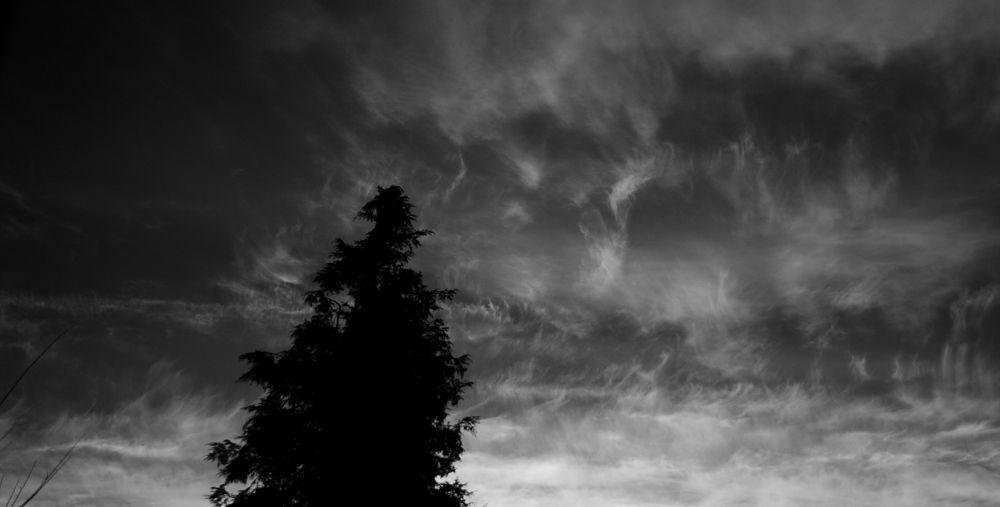 sky2 by TheoHorneman