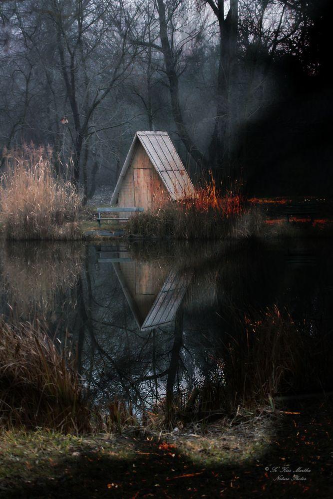 Photo in Random #nature #landscape #winter