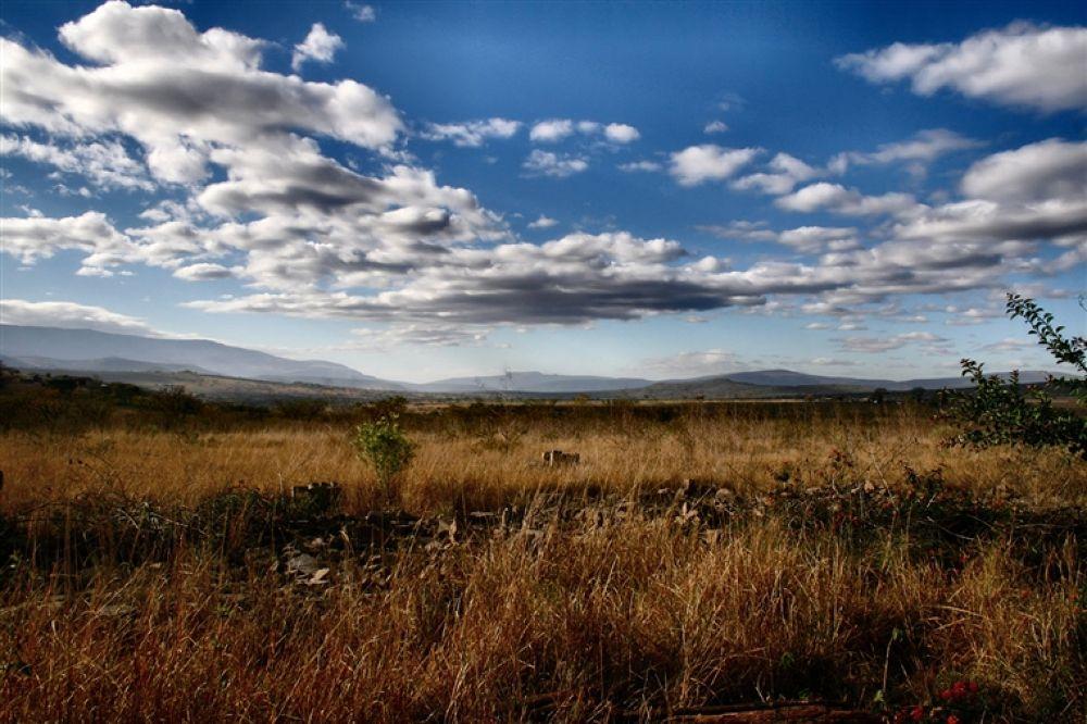 South_Africa_2007__2_by_DrHel by kariim19
