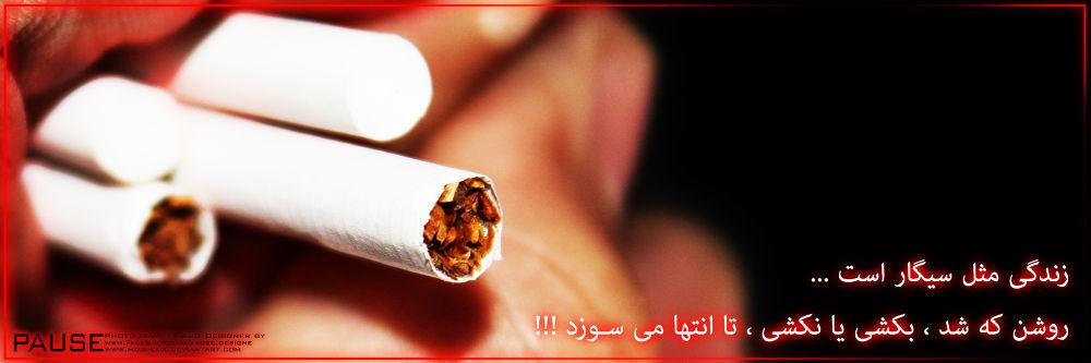sigar 2 by MOstafa Askarnezhad