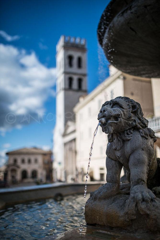 the fountain of the lions by antoniorescignogeom
