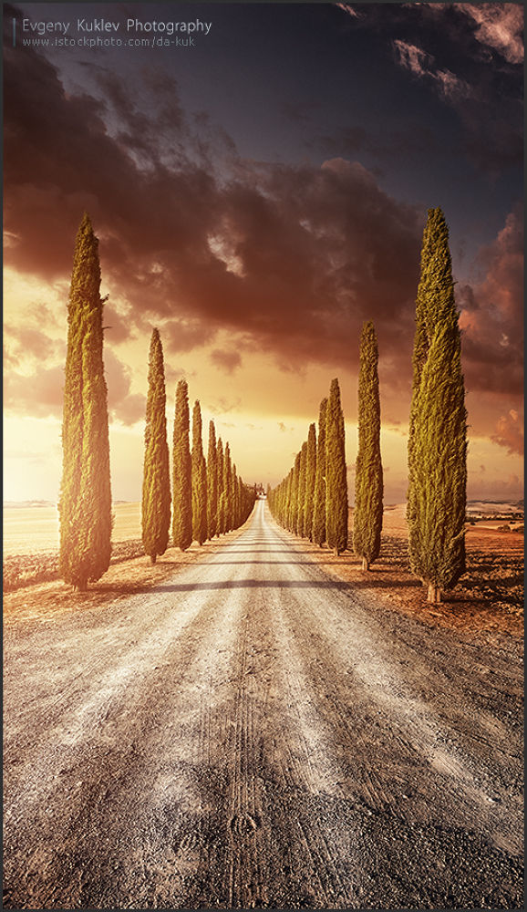 Valley of cypresses by Evgeny Kuklev