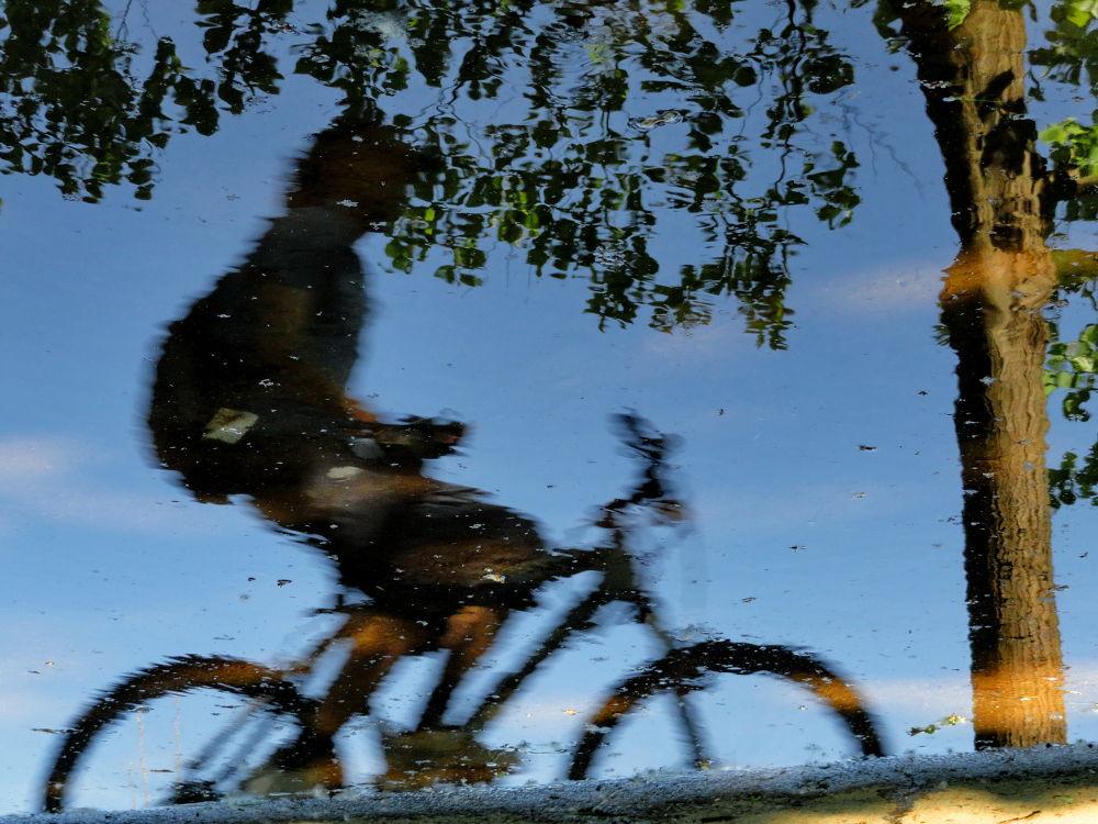 Bicyclist  by Keni