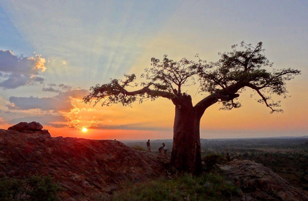 Masshatu, land of Giants by Corne