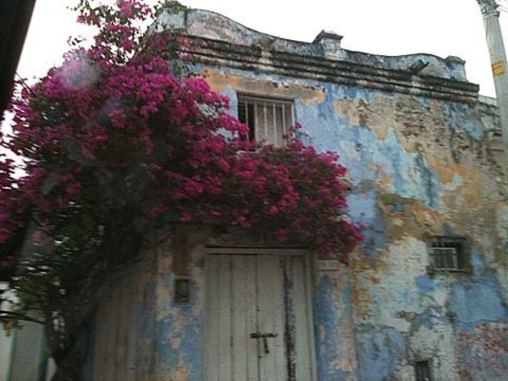 Casa Abandonada!! by lilianvillarreal
