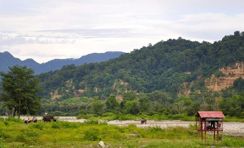 Photo in Landscape #india #mountain #hill #elephant #river #trees #scenic #green #grass