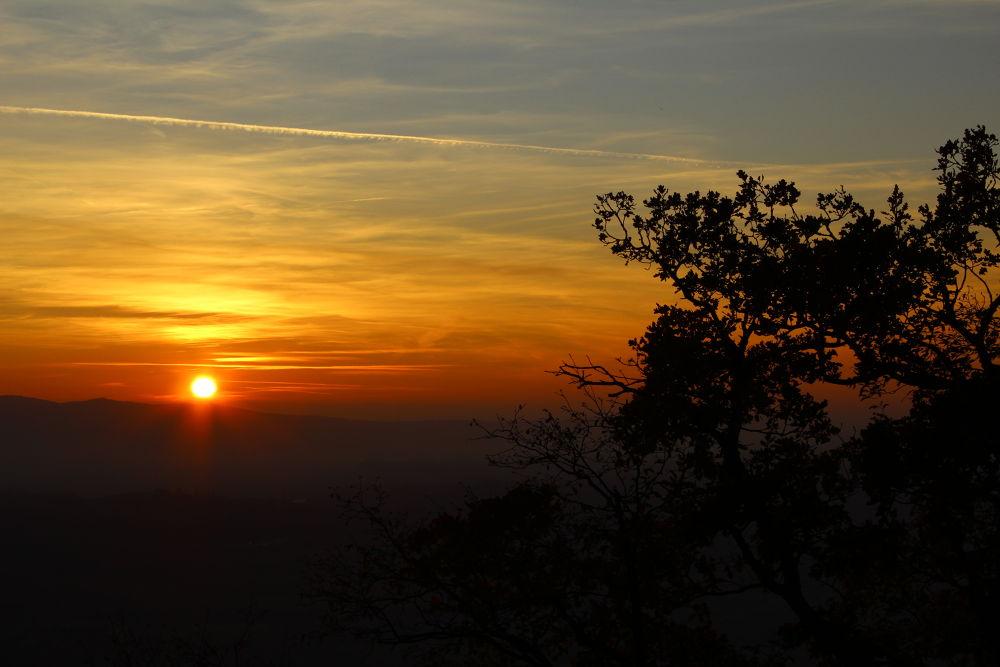 Photo in Landscape #landscape #sunset