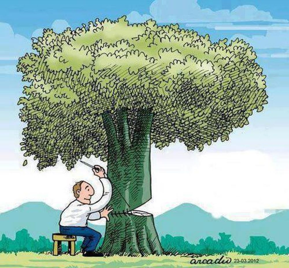 dont cut trees, protect environment, keep our planet for our children, www.enviromaroc.org by timizar
