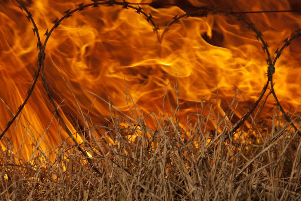 Heart of Fire by marcrossmann