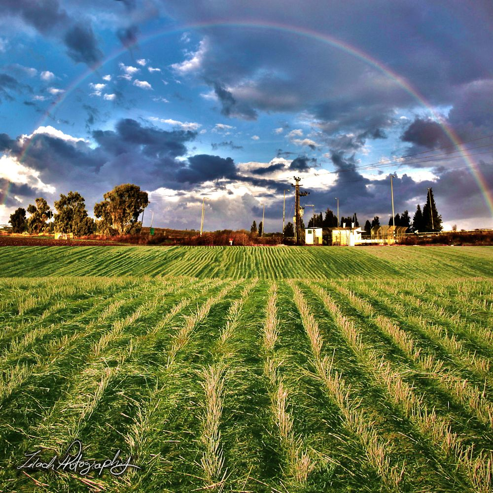 rainbow & grass_SM by LilachPhotography