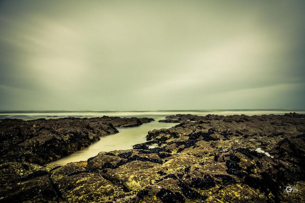 Marée - Low Tide by gilbertwayenborgh