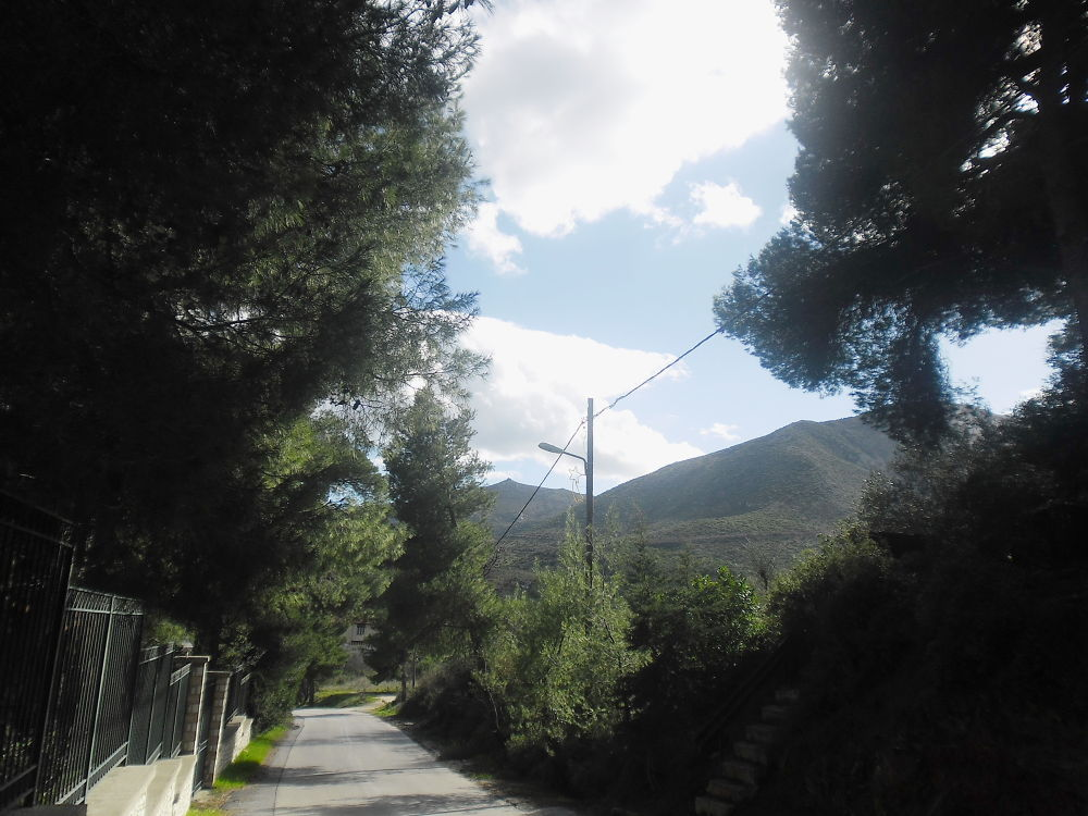 road to  Dionsos sanctuary  by thossa
