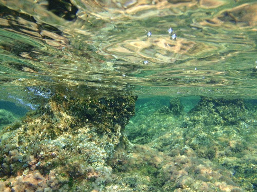 Photo in Random #limnos island. greece