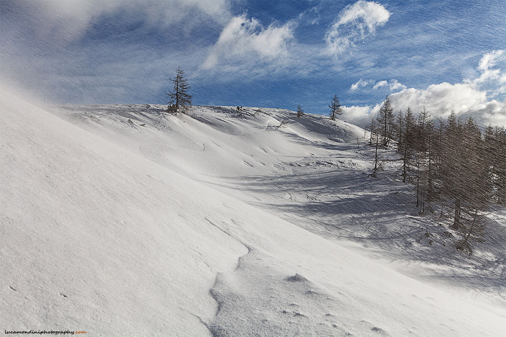 Photo in Random #wind storm #snow #wind #dolomites #clouds #mountain #lanscape #wilderness #ice #snowfall #ypa2013