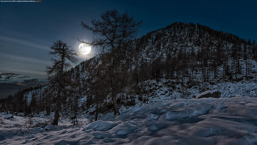 Under the moon light by lucamondini