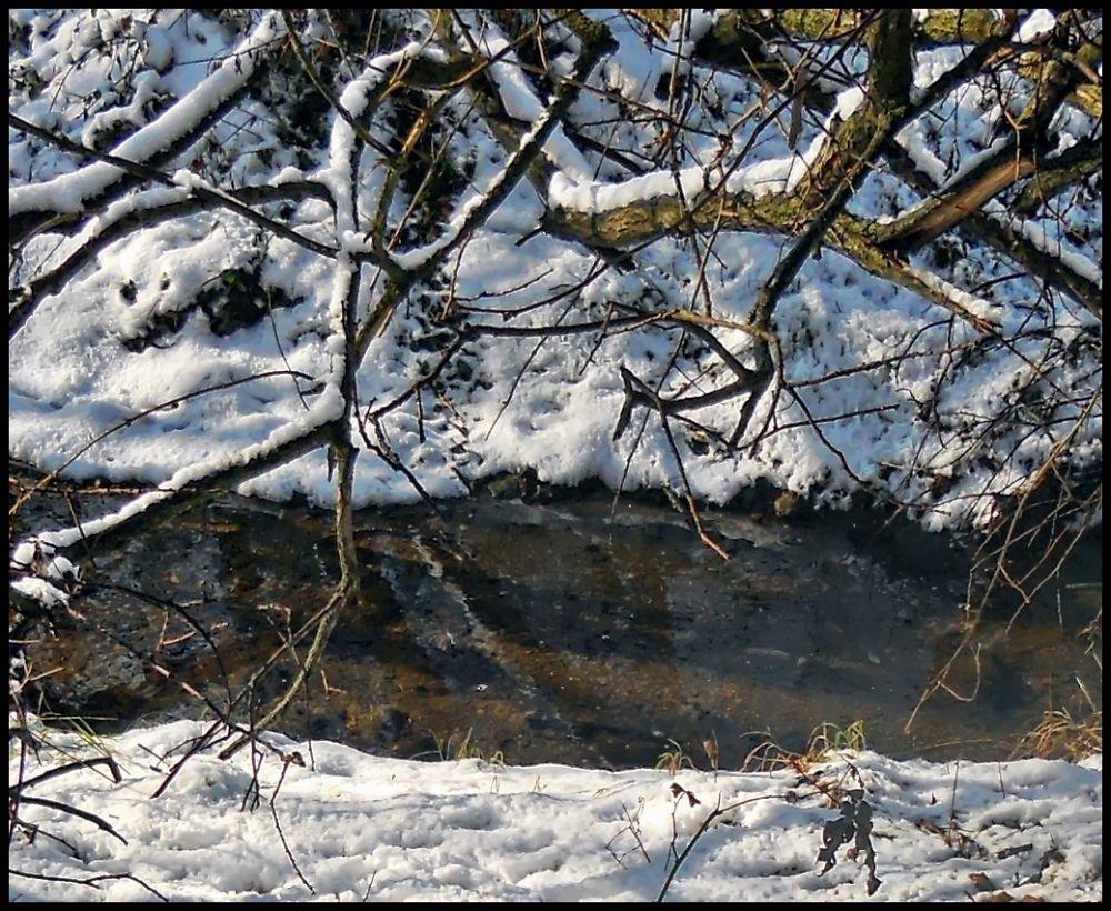 Winter by marilenavaccarini