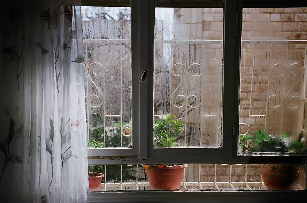 Winter window (film 35mm) by Eugene