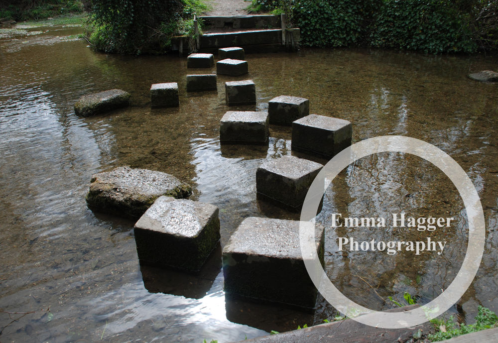 Stepping Stones by Emma Turner