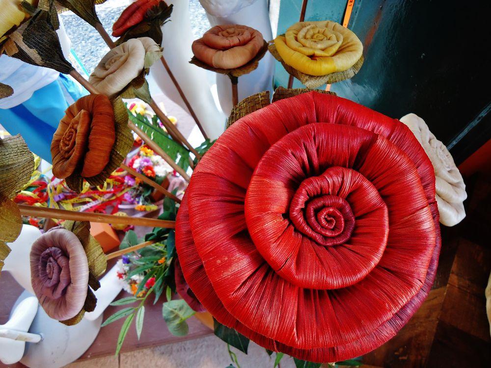 Flores by Ari Milton Schmidt