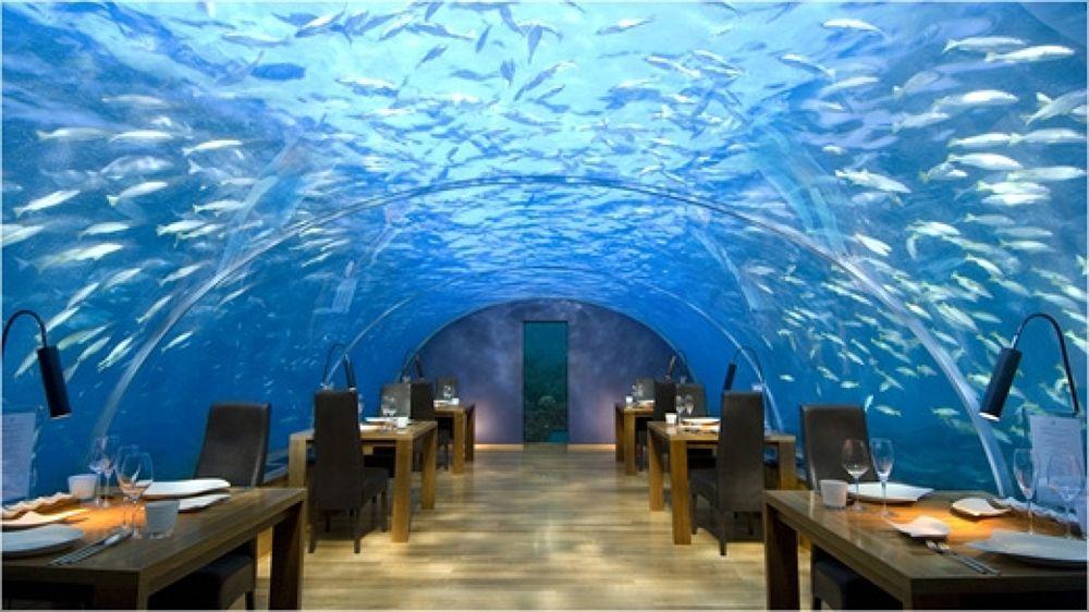 Maldives by vevito