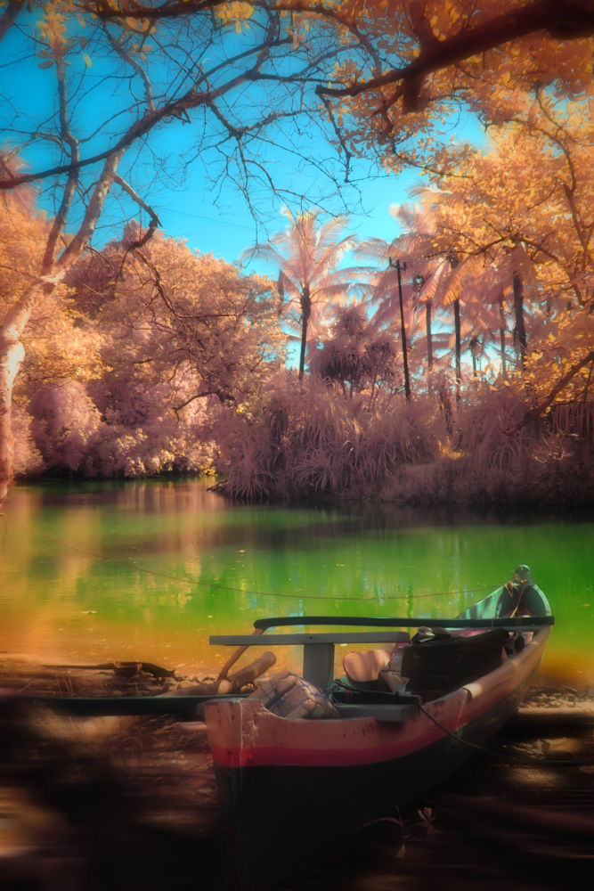 Photo in Landscape #selayar #awesome indonesia #infrared photography