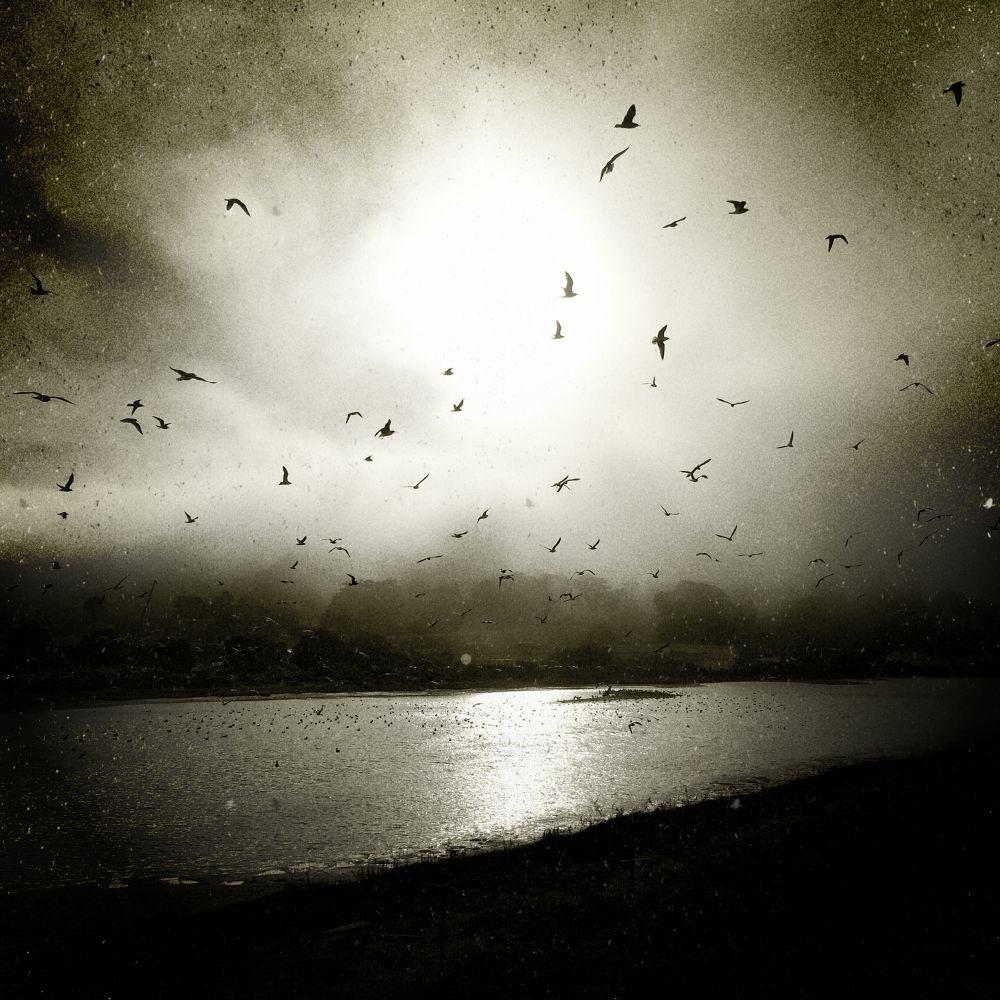 Untitled by acwynar