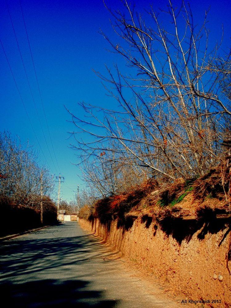 DSCN2497.jpg by Ali Khorshidi