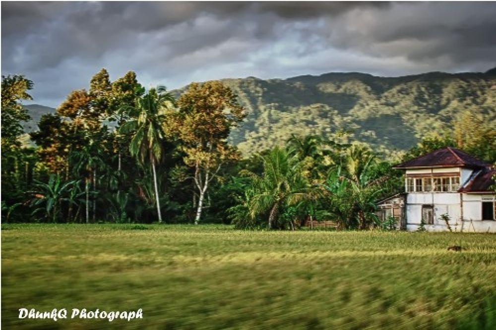 Landscape by Ricky