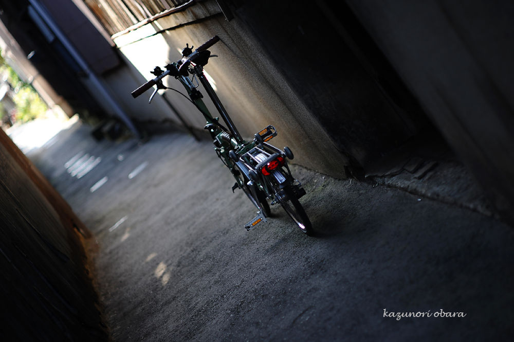 700_6564.jpg by kazunori_obara
