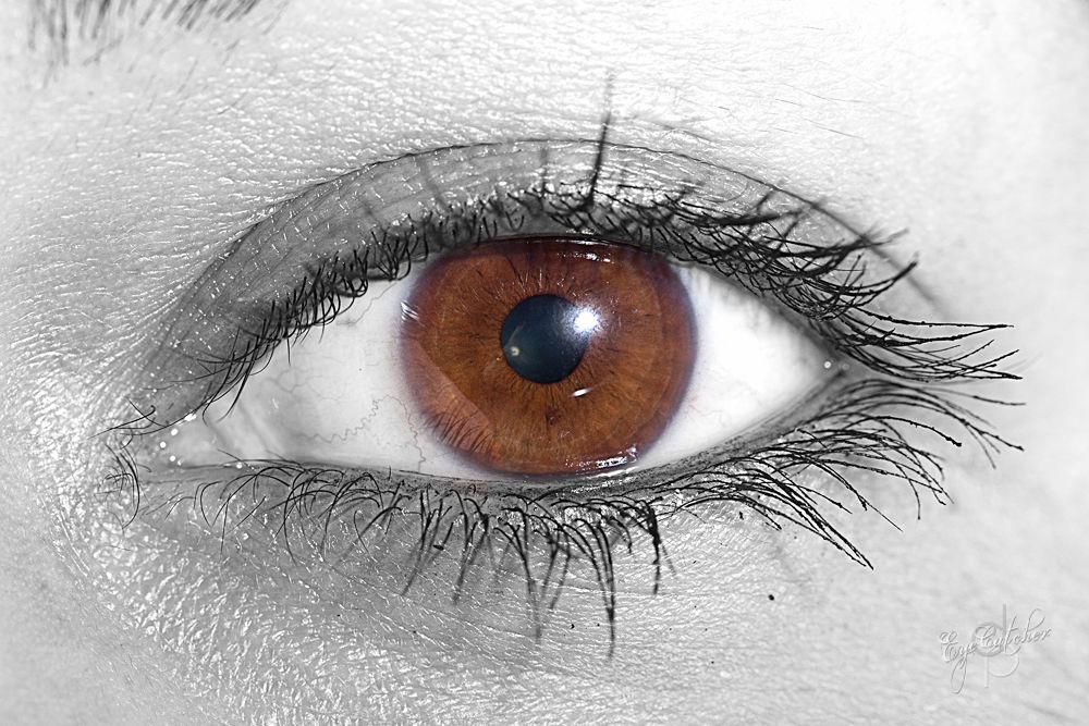 Mrs Altuns Eye.jpg by danieldornhofer