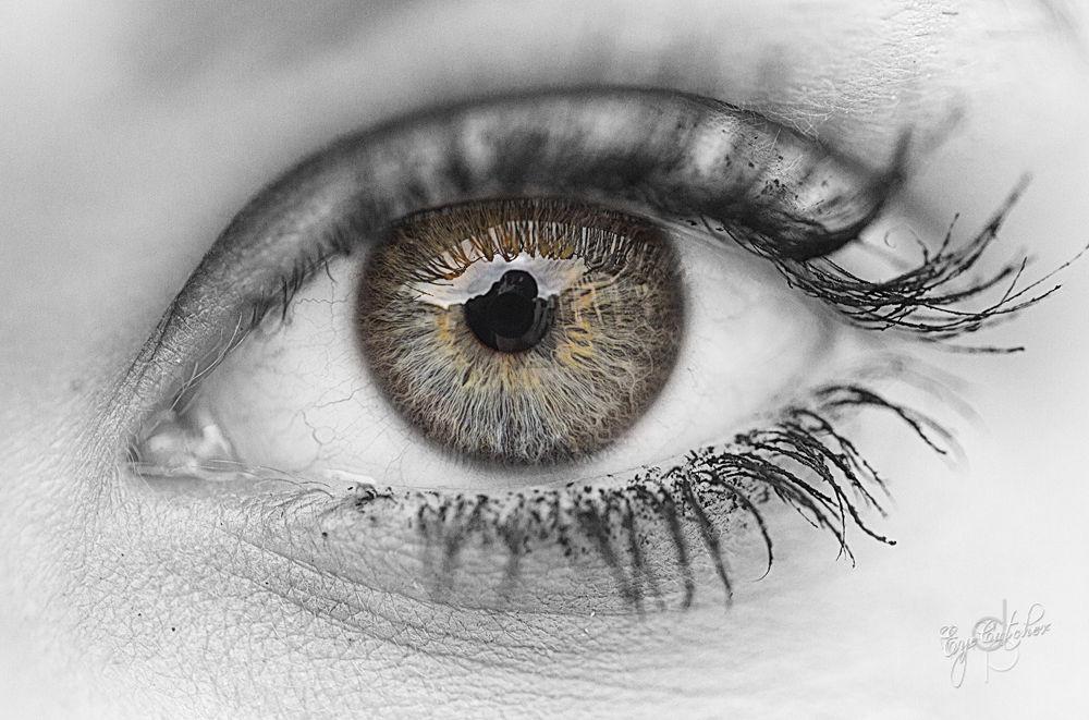 Sophias Eye-.jpg by danieldornhofer