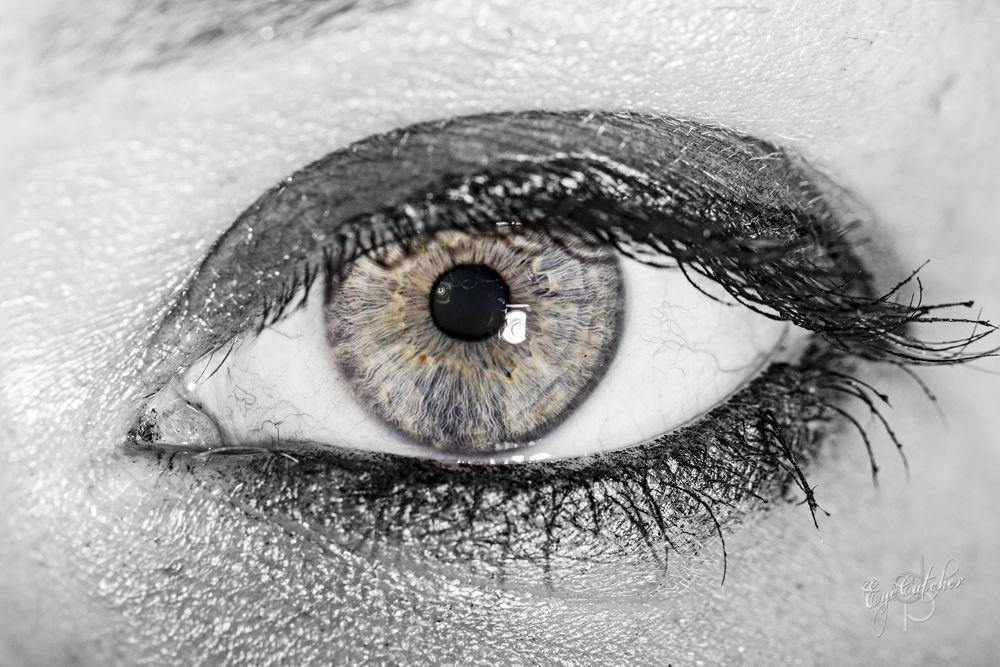 Stefies Eye-.jpg by danieldornhofer