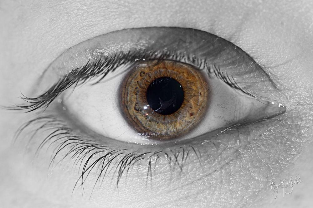 Anna V  Eye (1 von 1).jpg by danieldornhofer